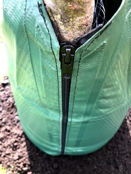 Bewässerungssack am Baum anlegen