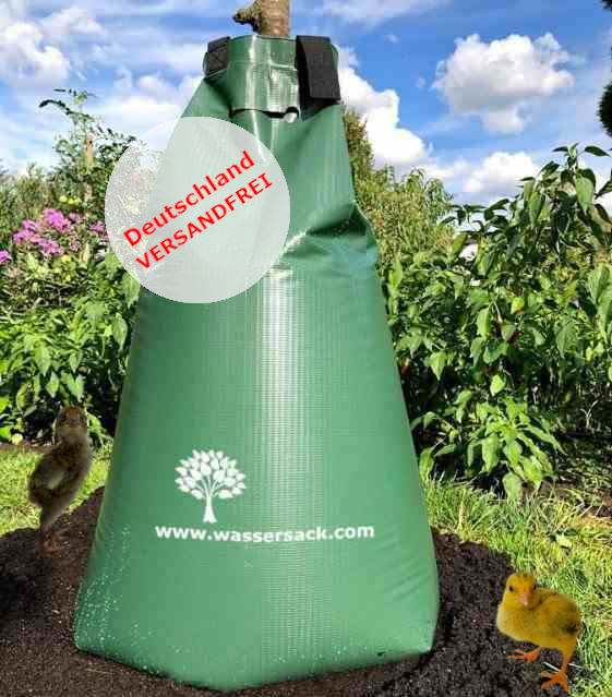 Wassersack zur Baumbewässerung, Foto: ©Reinhard Lippmann 2020 Dresden